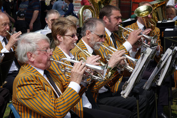 Much Hadham Fete - Band