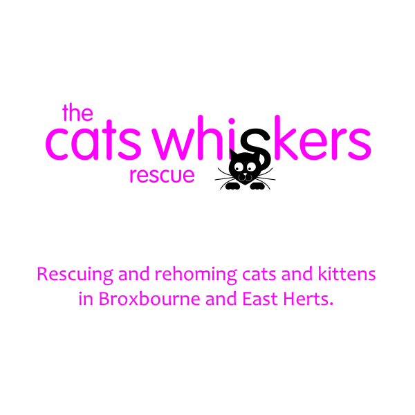 Cats Whiskers Rescue